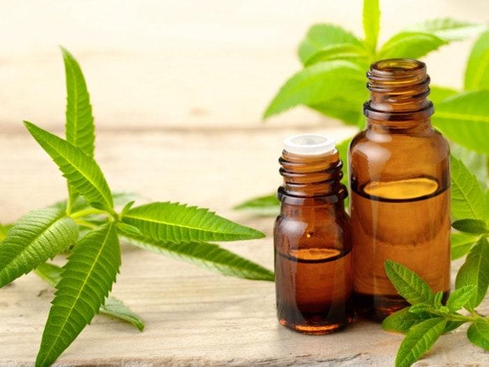 oil-bottle-leaves.jpg